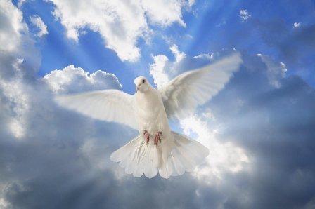 Blessings-of-the-Holy-Spirit